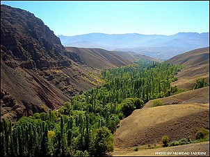 photograer : mehrdad tadjdini