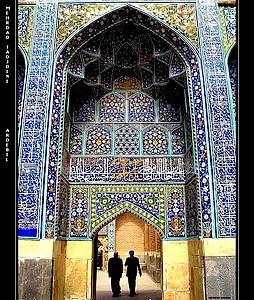 photografer : mehrdad tadjdini