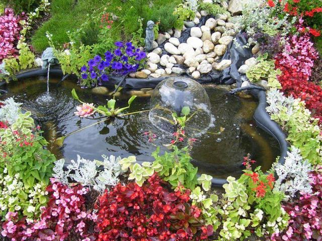 Čarobni vrt 12907290