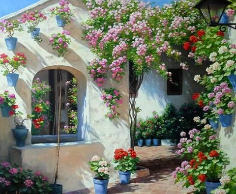 Cvijeće oko kuće  - Page 3 1013689-248501458608240-386019038-n