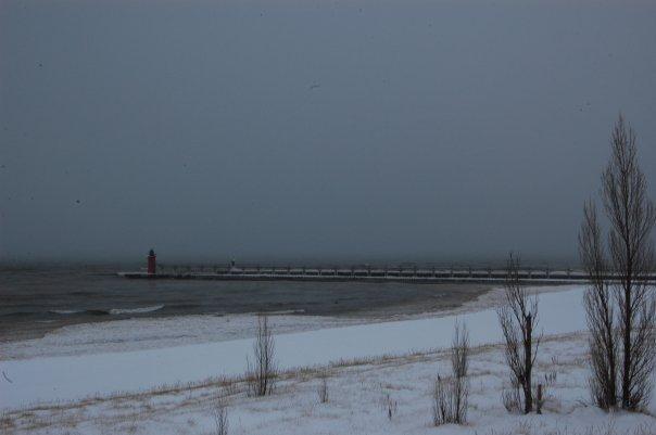 Snow Lake Effect Michigan - Gennaio 2010 4331260